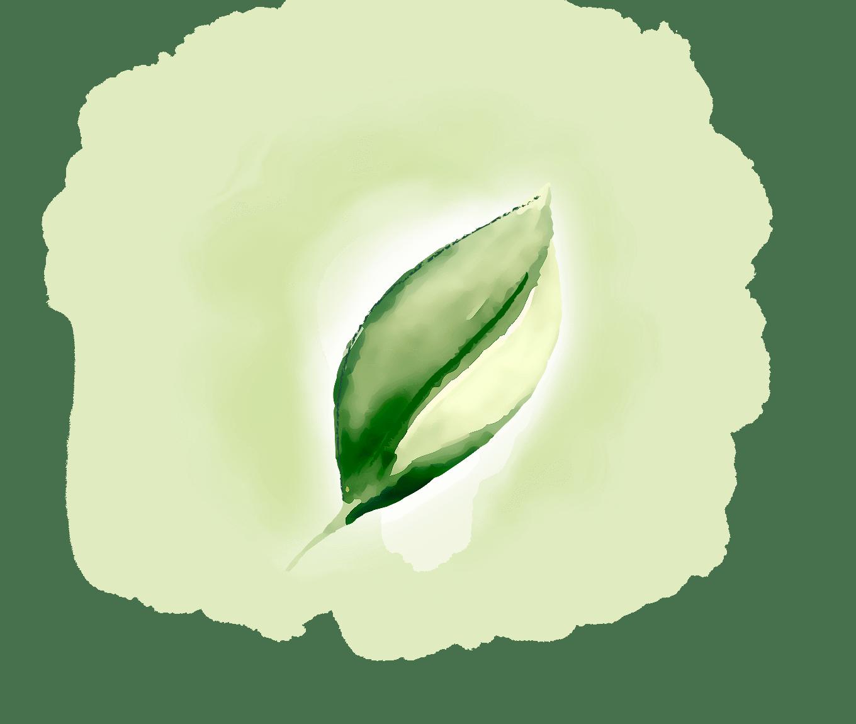 offerta-energia-verde-home